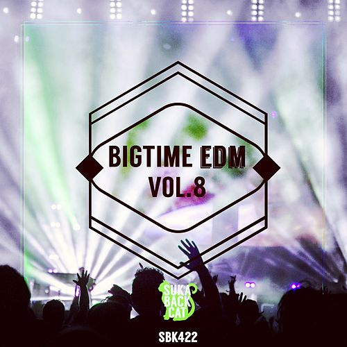 Bigtime EDM, Vol. 8 by Various Artists