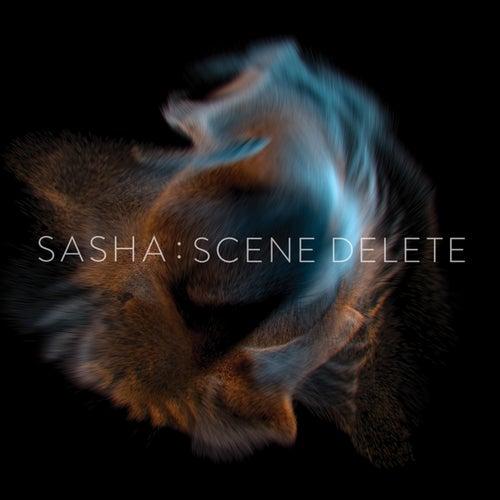 Late Night Tales presents Sasha: Scene Delete by Sasha