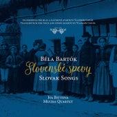 Play & Download Slovenské spevy / Slovak Songs by Iva Bittova | Napster