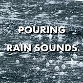 Pouring Rain Sounds by Rain Sounds