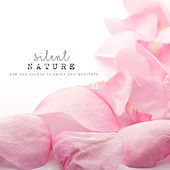 Play & Download Silent Nature: New Age Sounds to Relax and Meditate by Various Artists | Napster