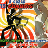 A Gozar 15 Cumbias by Various Artists