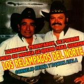 Llegaron, Triunfaron, Se Fueron by Los Relampagos Del Norte