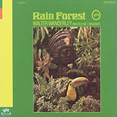 Play & Download Rain Forest by Walter Wanderley | Napster