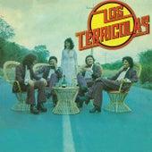 Play & Download Lo Han Visto Con Otra by Los Terricolas | Napster