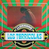 Play & Download Llorarás by Los Terricolas | Napster