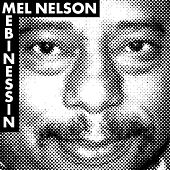 Mebinessin: Music by & Honoring the Musical Life of Mel Nelson by Various Artists