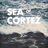 Sea of Cortez by The Sea of Cortez