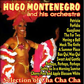 Play & Download Selection of Cha Cha Cha by Hugo Montenegro | Napster