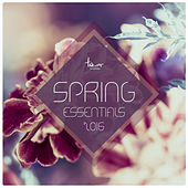 Spring Essentials 2016 by Various Artists