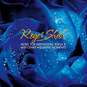 Play & Download Music for Meditation, Yoga & Any Other Wellbeing Moments by Roger Shah | Napster