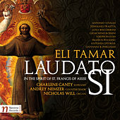 Laudato si: In the Spirit of St. Francis of Assisi by Various Artists