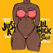 Play & Download Just A Lil' Thick (She Juicy) by Trinidad James | Napster
