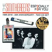 Play & Download Especially For You: 30th Anniversary by The Smithereens | Napster
