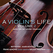 Play & Download A Violin's Life, Volume 2 by Various Artists | Napster
