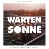 Warten auf die Sonne (feat. Amewu) by Kobito