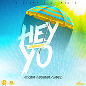 Hey Yo Riddim by Various Artists