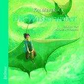 Die Wasserweber von Kai Meyer