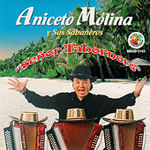 Play & Download Senor Tabernero by Aniceto Molina | Napster