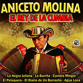 Play & Download El Rey de la Cumbia by Aniceto Molina | Napster