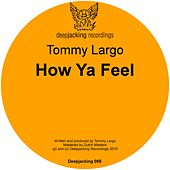 How Ya Feel by Tommy Largo