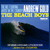 Play & Download The Beach Boys by Andrew Gold | Napster
