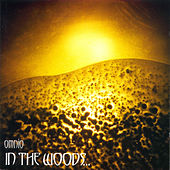 Play & Download Omnio by In The Woods | Napster