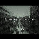 Cold Rain by Jim Santanella
