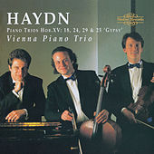 Haydn: Piano Trios by Vienna Piano Trio