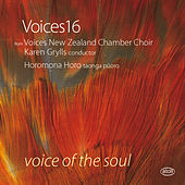 Play & Download Voice of the Soul by Various Artists | Napster