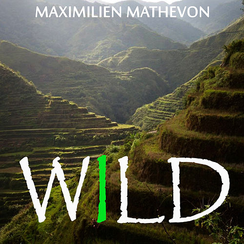 Play & Download Wild by Maximilien Mathevon | Napster