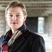 Play & Download Iestyn Morris by Iestyn Morris | Napster