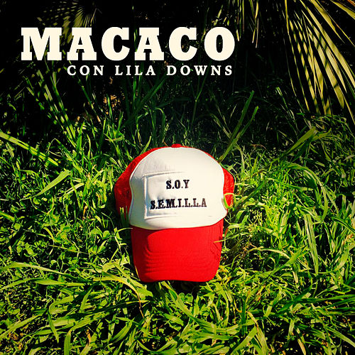 Play & Download Semillas by Macaco | Napster