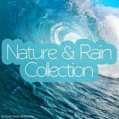 Nature & Rain Collection by Various Artists