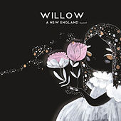 Play & Download A New England by Willow | Napster