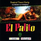 El Palito by Alfredo Gutierrez