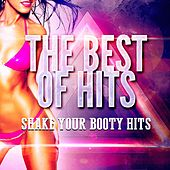 Shake Your Booty Hits by Ultimate Dance Hits