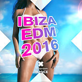 Play & Download Ibiza EDM 2016 - EP by Various Artists | Napster