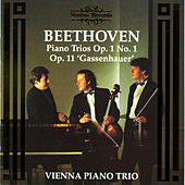 Beethoven: Piano Trios by Vienna Piano Trio