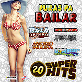 Play & Download Puras Pa Bailar by Various Artists | Napster