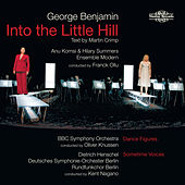 Play & Download Benjamin: Into the Little Hill by Various Artists | Napster