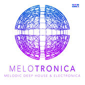 Melotronica by Various Artists