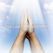 The Lord's My Shepherd by David Shelley