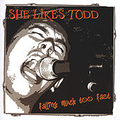Falling Much Too Fast by She Likes Todd