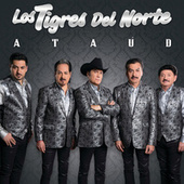 Play & Download Ataúd by Los Tigres del Norte | Napster