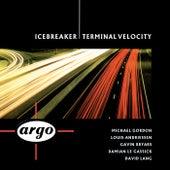 Terminal Velocity by Icebreaker
