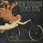 Drinking in the Moonlight by New Radiant Storm King