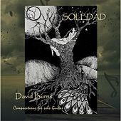 Play & Download Soledad by David Burns | Napster