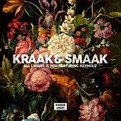 Play & Download All I Want Is You (feat. Keyhole) - Single by Kraak & Smaak | Napster