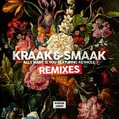 Play & Download All I Want Is You (feat. Keyhole) [Remixes] - EP by Kraak & Smaak | Napster